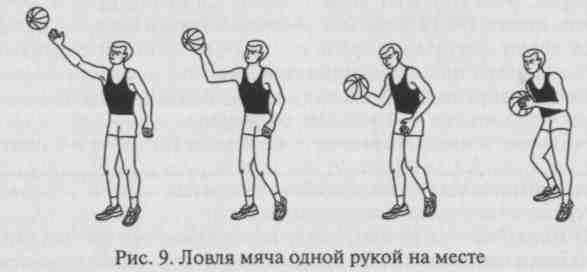 положение рук при ловле мяча двумя руками