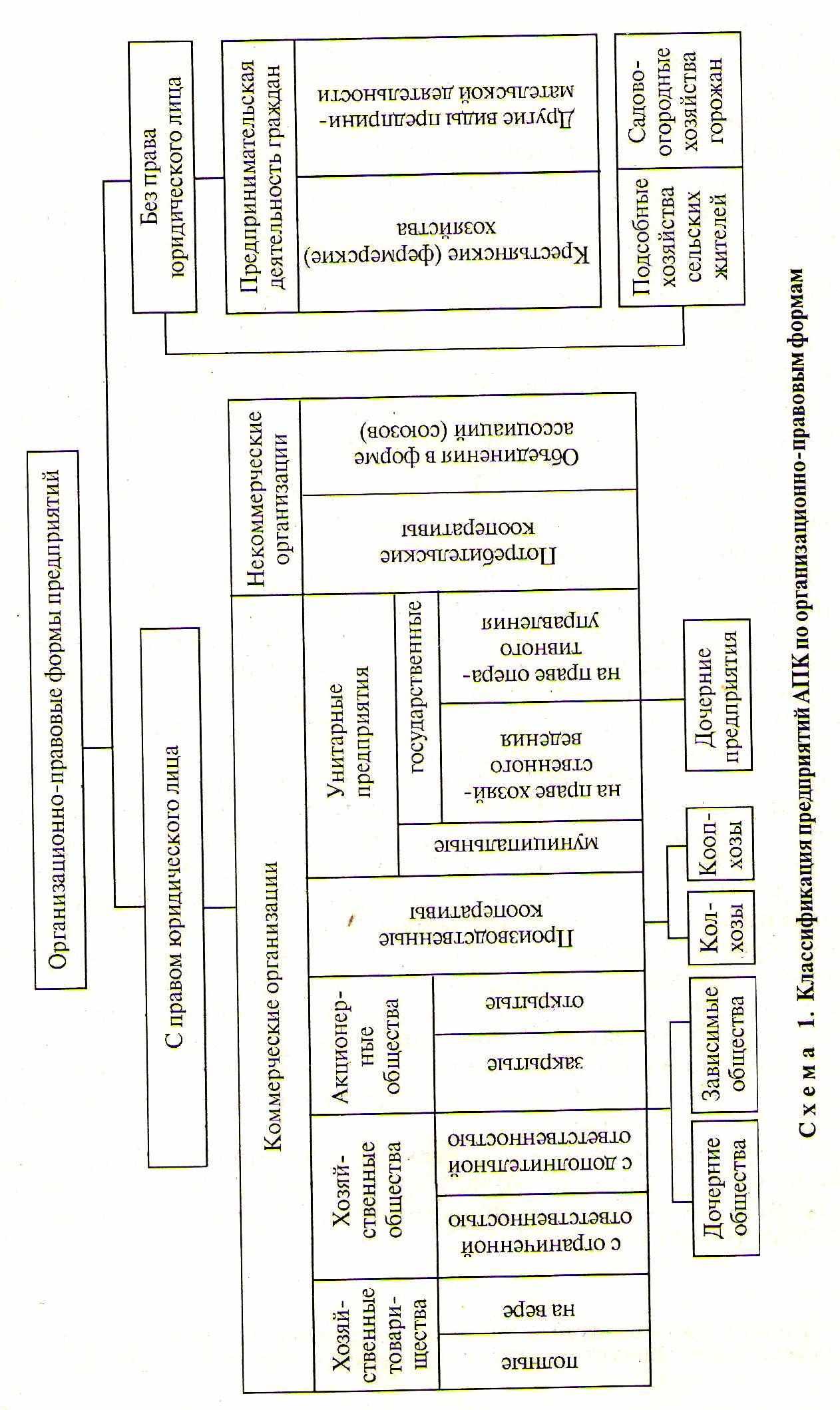 Виды организационно-правовых форм предприятий схема