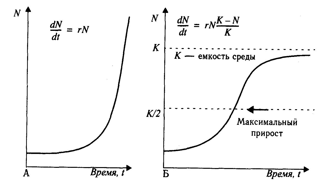 1221 динамика популяций