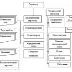 Производственная практика ООО Мисо бар. с. 5-6