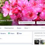 Чем отличается группа в Facebook от страницы и что вам лучше подходит
