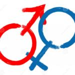 Гендерная социализация — понятие и основные теории